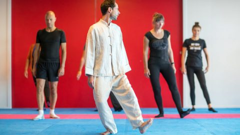 Tai chi workshop gemeente Den Bosch